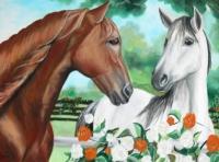Obraz koní