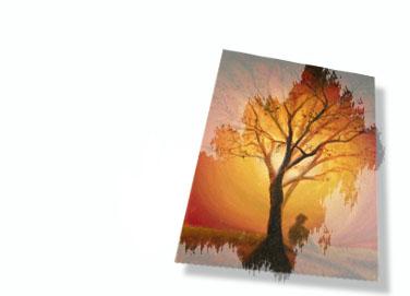 Obrazy krajinky